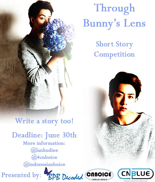 bunny bb project poster